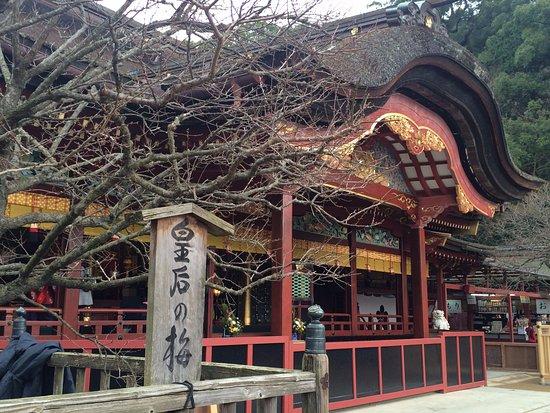 Dazaifu Temmangu: 太宰府天満宮の皇后の梅