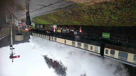 Lydney, UK: DSC_0080_large.jpg