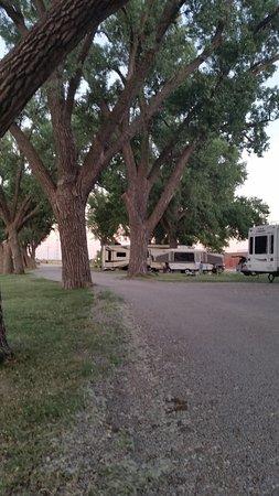 Ellis, KS: Spacious level wooded campsites