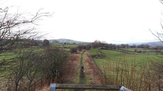 Tees Railway Path: Trail