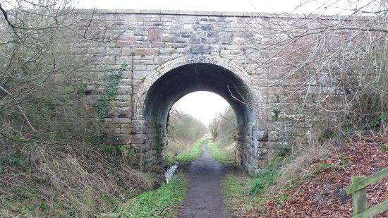 Tees Railway Path: Bridge