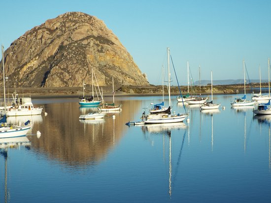 Estero Inn: Harbor view