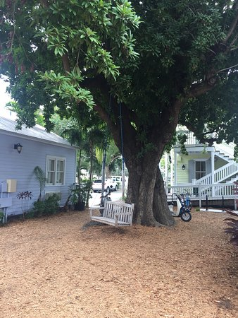 Key Lime Inn Key West: Charming experience, we're looking forward to our next visit!!