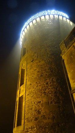 Chateau de la Flocelliere Foto