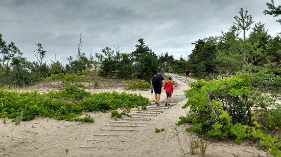 Sandbanks Provincial Park: beautiful walking trails