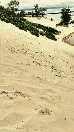 Sandbanks Provincial Park: Sandbanks Dunes Beach