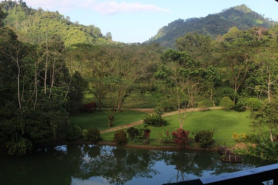 Provincia de Puntarenas, Costa Rica: View from Tent #1