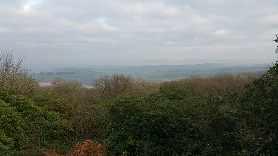 Dunchideock, UK: 20161229_144134_large.jpg