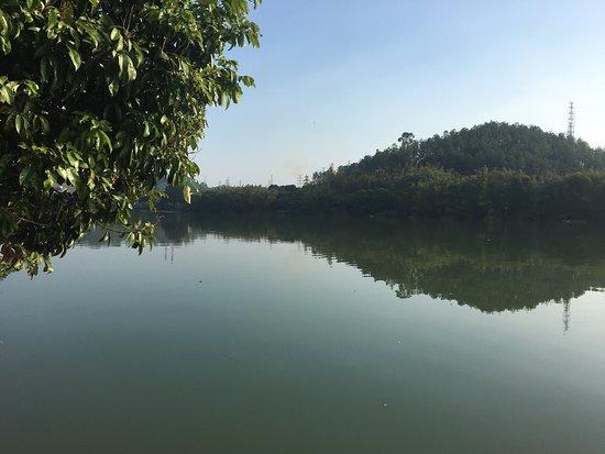 Hawana Resort GuangZhou: photo5.jpg