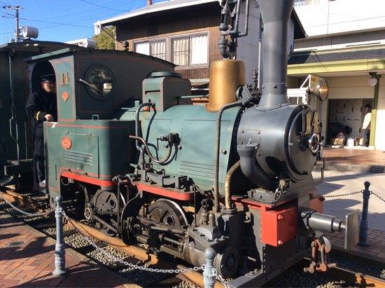坊っちゃん列車, photo1.jpg