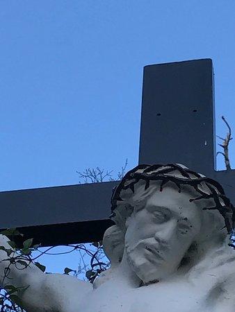 Franciscan Friary: photo6.jpg