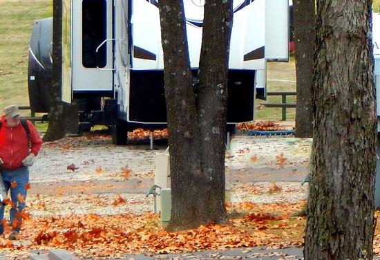 Carthage, MO: Gathering leaves