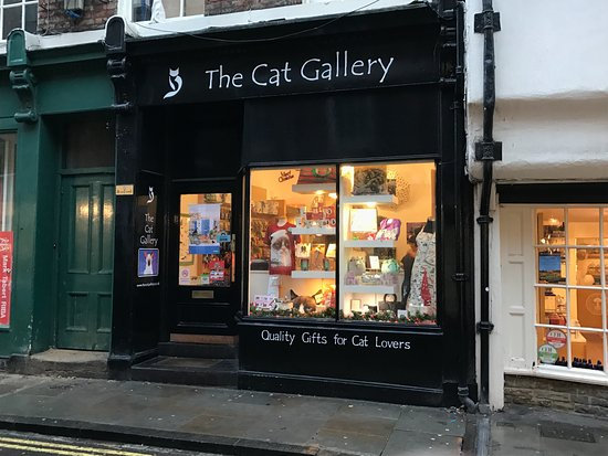 ‪The Cat Gallery‬