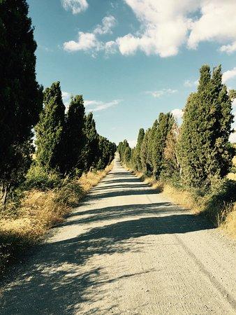 Agriturismo Il Giglio di S. Antonio: road to S. Antonio