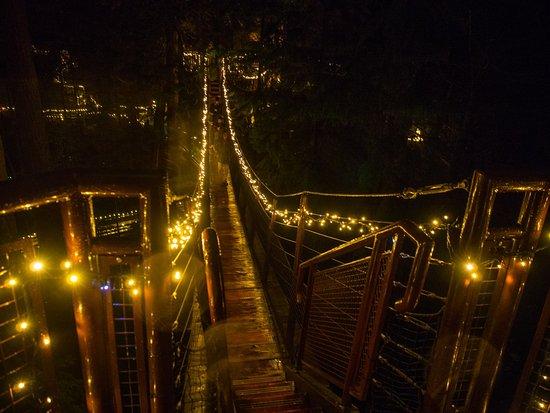 Nord-Vancouver, Canada: Tree Top walkway