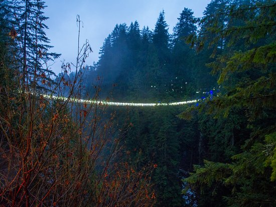 Nord-Vancouver, Canada: Bridge over the gorge