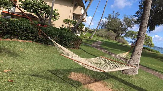 Kauai Coast Resort at the Beachboy: hammocks by the beach