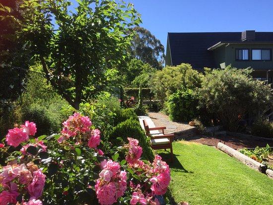 Carawah Ridge Bed and Breakfast: Summer Garden