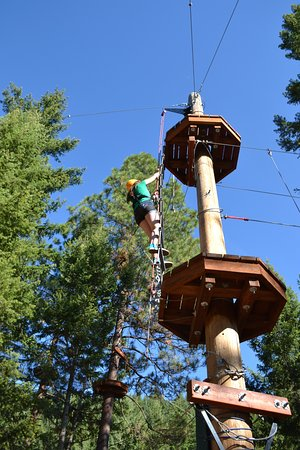 Oyama, Canada: Climbing rope ladder to platforms