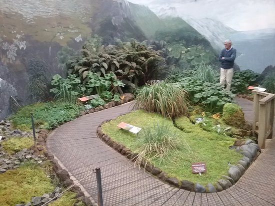 Sub-Antarctic Plant House