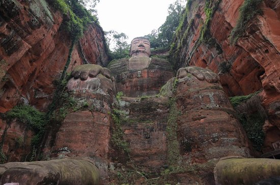 Chengdu Panda Base and Leshan Grand