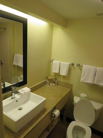 Red Roof PLUS+ West Palm Beach: Room 243 bathroom
