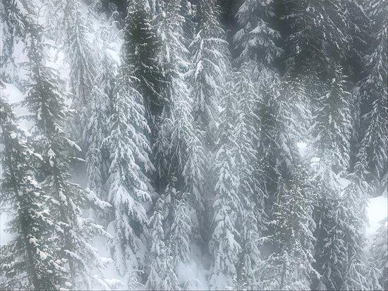 北溫哥華照片