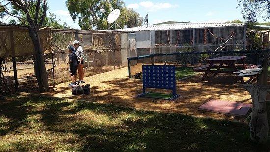 Dongara, ออสเตรเลีย: bird cages