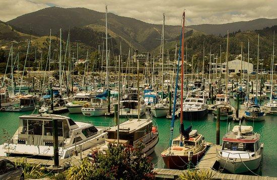 Harbourside Motor Lodge: View from Harbourview Studio