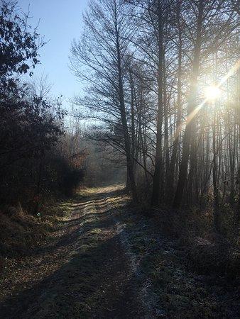 Nagykanizsa, Hungary: Csodás téli kirándulás
