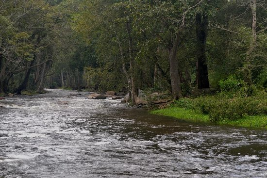 Chinnar Wildlife Sanctuary: In the beauty of Nature