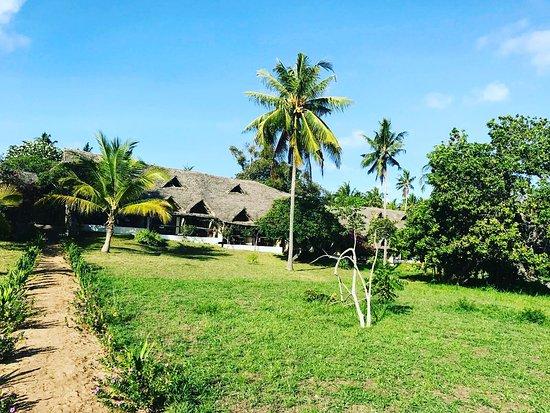 Mafia Island Lodge: IMG_20161230_205145_441_large.jpg
