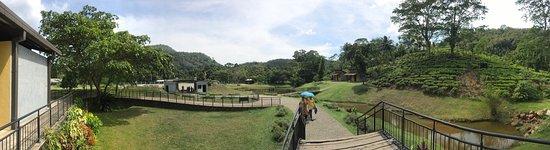 Avissawella, Σρι Λάνκα: photo7.jpg