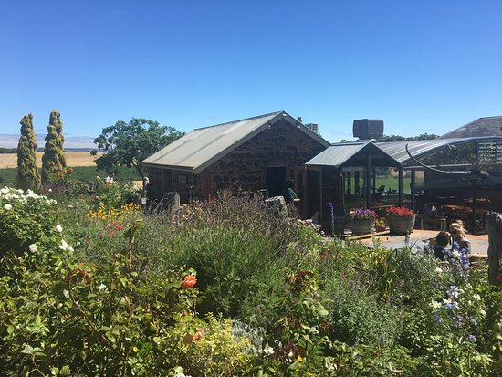 Coriole Winery: photo0.jpg