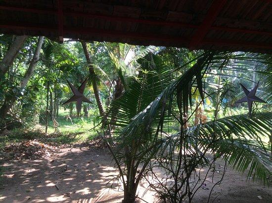Foto Chendamangalam