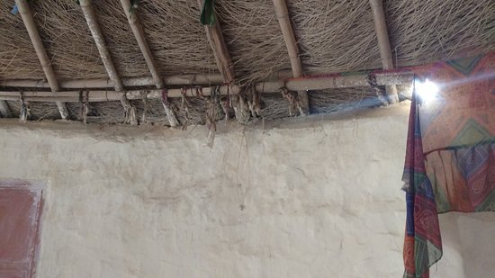 Malra Heritage Camp Photo
