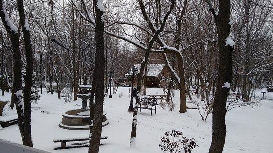 Sherwood Park, Canada: Η βεράντα στο πίσω μέρος