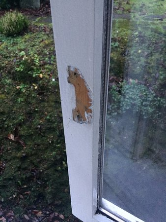 Lochearnhead, UK: window handles missing