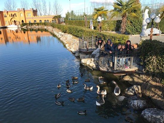 Terme Francescane Thermal Baths