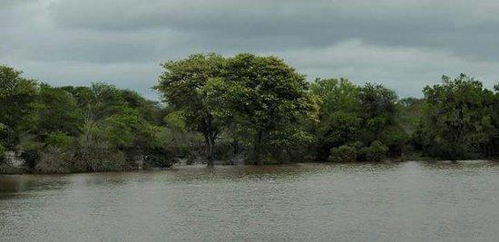 Rainbow Lodge: one of the dams