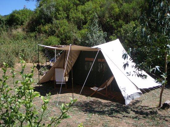 Figueiro dos Vinhos, Portugal: Fully equipped rental tents, De Waard Albatros