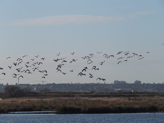 Purfleet, UK: Taking off