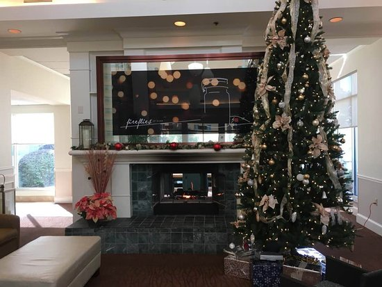 hilton garden inn savannah airport lobby decorations included a nicely decorated christmas tree and a - Hilton Garden Inn Savannah Airport