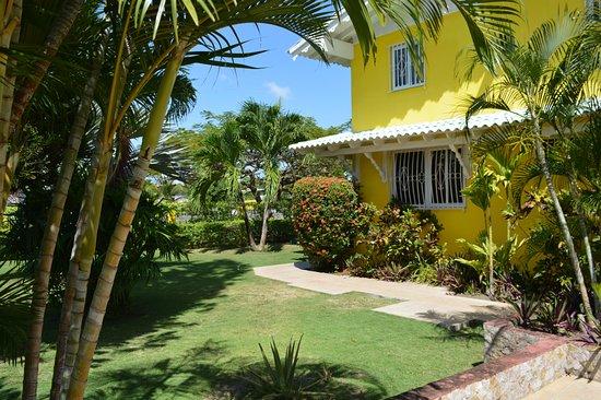 Hostal Casa Amarilla: Jardin