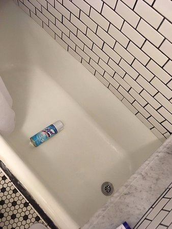 Larchmont Hotel: Lysol can for scale
