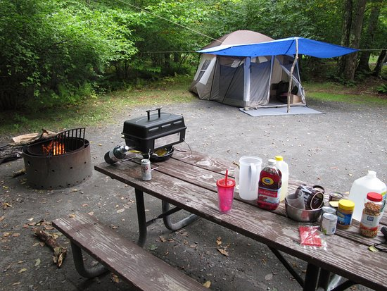 Mongaup Pond Campground: our site #92