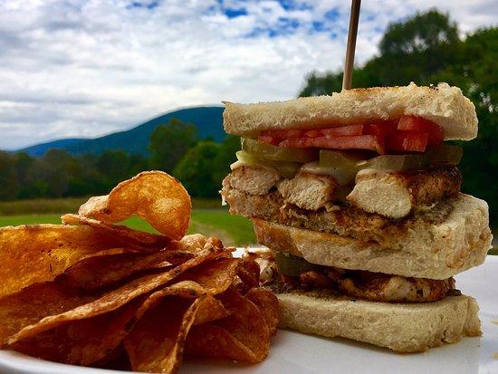 Nellysford, VA: Blacken Chicken Sandwich