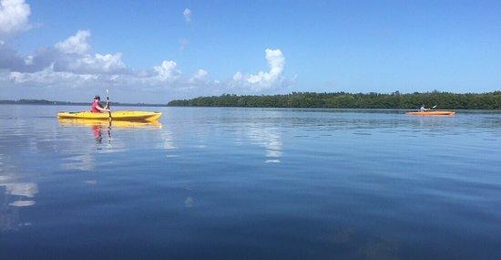 Adventure Kayaking: photo0.jpg