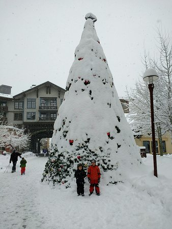 The Village At Squaw Valley: A really big Christmas Tree