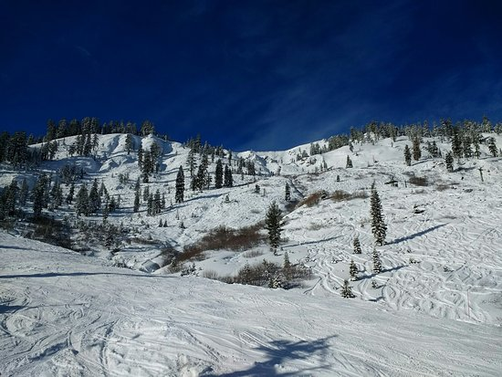 The Village At Squaw Valley: The view from one of the ski lifts